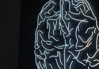 Cognitive Science|認知科学