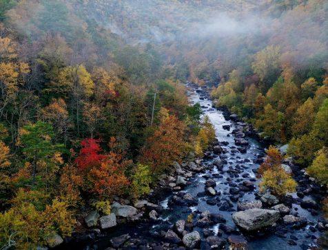 バージニア州